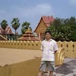 southeast-asia-research-new-directions-environmental-governance-ndeg-xing-lyu