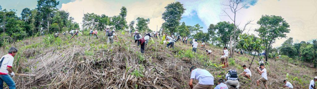 5 AURA PES Planting Day Pano